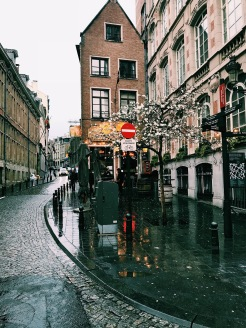 Street view by Manneken Pis